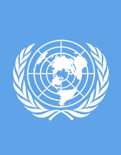 2018 Report of the Secretary-General