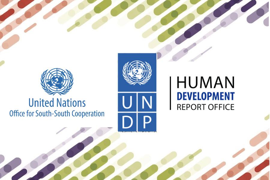 UNOSSC-UNDP HDRO Webinar Consultation on HDR 2020