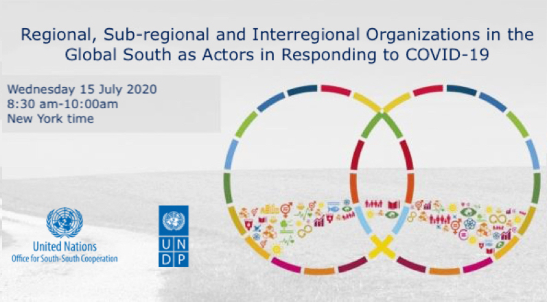 Regional, Sub-regional and Interregional Organizations in the Global South as Actors in Responding to COVID-19